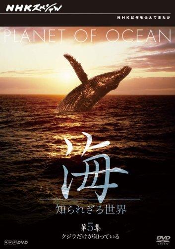 NHKスペシャル 海 知られざる世界 第5集 クジラだけが知っている [DVD]