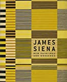 img - for James Siena: New Paintings and Gouaches book / textbook / text book