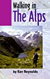 Walking in the Alps (Travel)