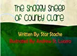 The Shaggy Sheep from County Clare