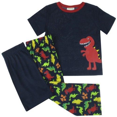 Capelli New York Little Boys Dinosaur 3 Piece Set: Tee, Short And Pants Navy Combo 4/5