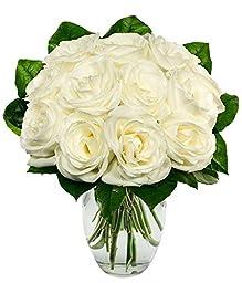 Ivy Lane - Eshopclub Same Day Flowers Delivery - Fresh Flowers - Wedding Flowers Bouquets - Birthday Flowers - Send Flowers - Flower Arrangements - Floral Arrangements - Flowers Delivered