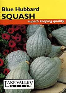 Lake Valley 3382 Squash Winter Blue Hubbard Seed Packet