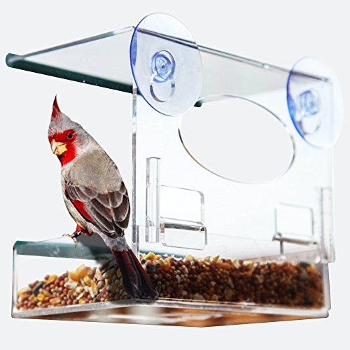 Window Bird Feeder: Watch Wild Birds Up Close, Removable Seed Tray, Great Holiday Gift
