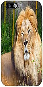 Snoogg African Lion Male Designer Protective Back Case Cover For Apple Iphone...