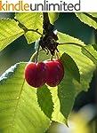 Kirschen: Cherry Tree: Kirschsaft : K...