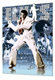 GB eye Ltd, 3d Lenticular Poster, Elvis, (47x67cm)