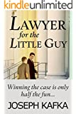 Lawyer for the Little Guy