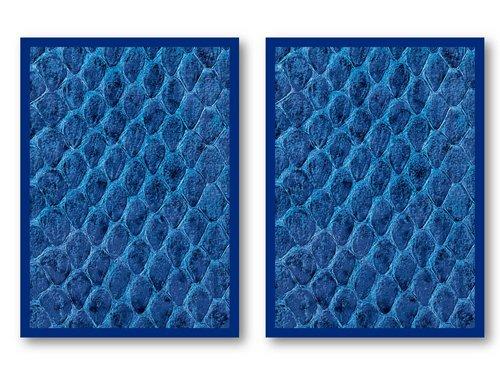100 Legion Blue Dragon Hide Deck Protectors Sleeves MTG Colors Scale