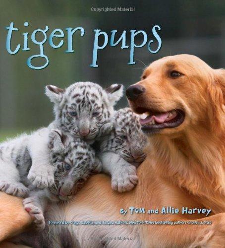 Tiger Pups PDF