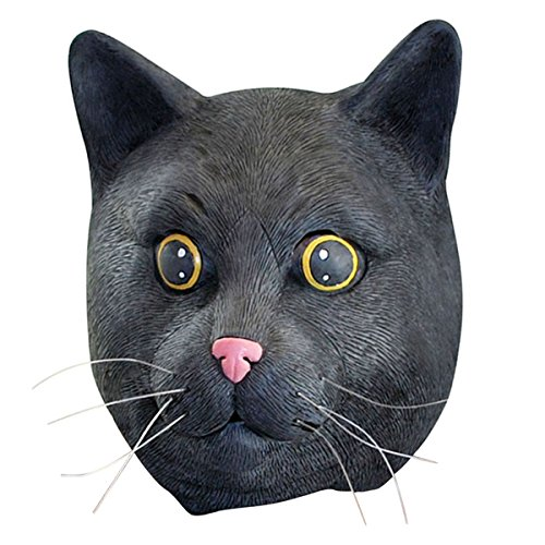 Black Cat Full Face Mask