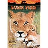 Born Free ~ Virginia McKenna