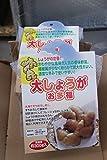【野菜苗】【種イモ】ショウガ 大ショウガお多福500g 2パックセット 【送料込】