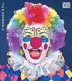 Childrens Multi Coloured Rainbow Afro Wig Clown Kids Boys Girls Fancy Dress