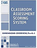 Classroom Assessment Scoring System(TM) (CLASS(TM)) Dimensions Overview