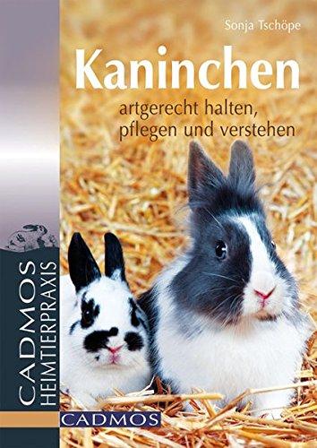 Libro Zwergkaninchen Gl 252 Cklich Durchs Leben Hoppeln Di border=