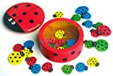 Wooden Ladybird Game Tiddlywinks, Tiddly Winks Kids Childrens Toy