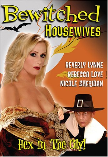 Cover art for  Bewitched Housewives
