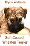 Soft Coated Wheaten Terrier: How to Own, Train and Care for Your Soft Coated Wheaten Terrier