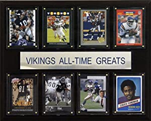 NFL Minnesota Vikings All-Time Greats Plaque by C&I Collectables