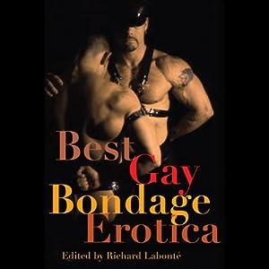 Best Gay Bondage Erotica | [Richard Labonte (editor), Jack Fritscher, Jeff Mann, Larry Townsend]