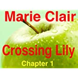 'Crossing Lily' - Novel in Progress Chapter 1 (Undone)