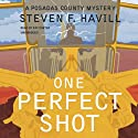 One Perfect Shot: A Posadas County Mystery (       UNABRIDGED) by Steven F. Havill Narrated by Ray Porter