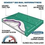 InnoMax Genesis Dual 800 Ultra Waveless Lumbar Support Waterbed Mattress, Queen