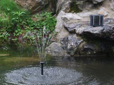 Cascade de bassin pas cher for Cascade bassin de jardin pas cher