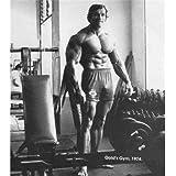 Arnold Schwarzenegger (24inch x 27inch / 60cm x 68cm) Silk Print Poster - Seide Plakat - 4EAB14