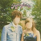 Sugarglider