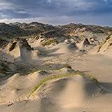 Dune Worship by White Manna (2013-10-01)