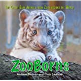 ZooBorns: The Cutest Baby Animals from Zoos Around the World!by Andrew Bleiman