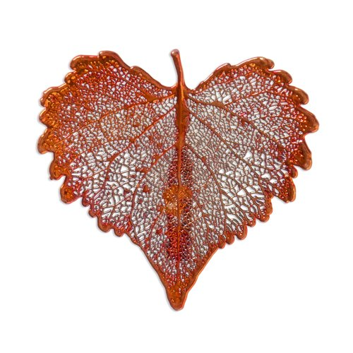 Iridescent Copper Dipped Cottonwood Leaf Pin