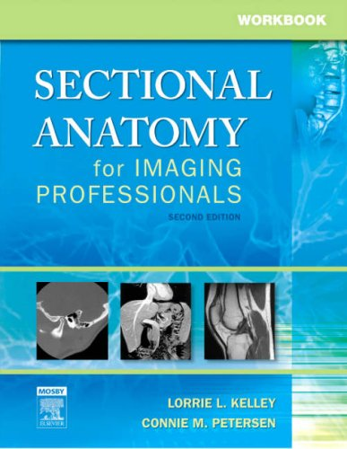 Workbook for Sectional Anatomy for Imaging Professionals, 2e