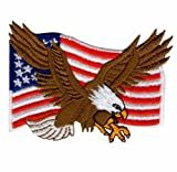 Eagle American USA Flag logo Iron on Sew on Embroidered Patch Art Craft Embroidery Applique motif