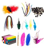 Hairdresser Salon Quality Set of Colorful Feather Extensions With Application Tools Including Rings And Hook And Wash Out Dye Chalk Pastels In 24 Colors For Hair Styling By VAGA