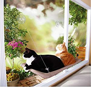 Cat window mounted sunny seat-up to 25 pounds securely