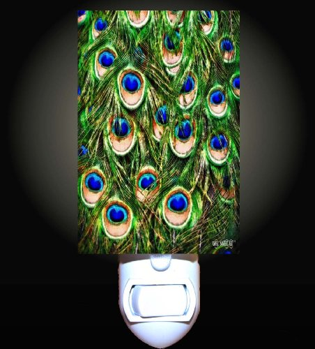 Peacock Feathers Decorative Night Light front-941331