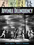 Juvenile Delinquency: A Sociological Approach (5th Edition)