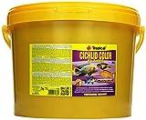 Tropical Cichlid Color Flakes - farbverstärkendes Flockenfutter mit Beta-Glucan
