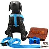 Alfie Pet By Petoga Couture - Kasey LED Flashing Pet Safety Collar Harness And Leash Set With Microfiber Fast-Dry...
