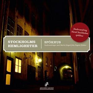 Stockholms hemligheter [Mysteries of Stockholm]: Spökhus | [Martin Stugart]
