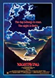 Nightwing [Import]