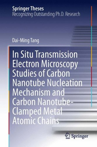 In Situ Transmission Electron Microscopy Studies Of Carbon Nanotube Nucleation Mechanism And Carbon Nanotube-Clamped Metal Atomic Chains (Springer Theses)