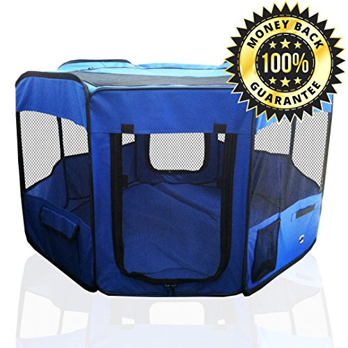 ToysOpoly Inflatable Hopper Cutest Bouncy Chair For Kids