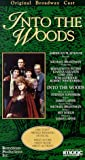 Into the Woods [VHS]