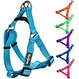 Blueberry Pet 3/4-Inch Harnesses Classic Solid No Pull Dog Harness Adjustable Polyester Nylon, Medium, Turquoise