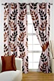 HOMEC Trendy Printed Door Curtains Set of 2 (Size - Door 46 X 84 inch/Color - Brown)