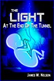 img - for The Light at the End of the Tunnel (A Supernatural Thriller) book / textbook / text book